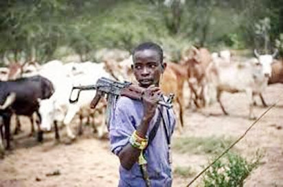 """The Fulani Question: A Tale of the """"LeftBehinds"""""""
